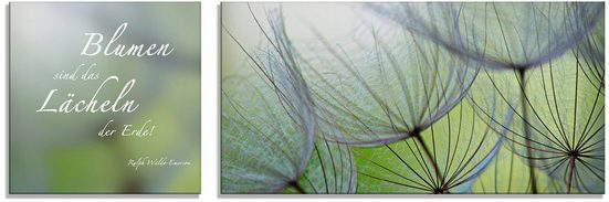 Artland Glasbild »Zitatenbild, Pusteblumen-Samen«, (2 Stück)
