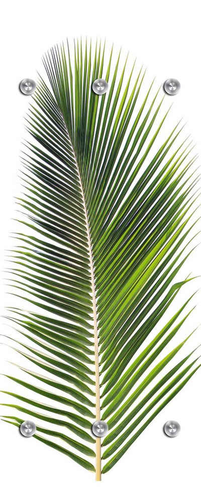 queence Garderobenpaneel »Palme«, mit 6 Haken, 50 x 120 cm