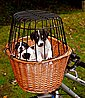 TRIXIE Fahrradkorb mit Gitter, Bild 1