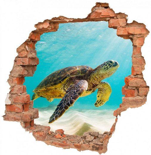 desfoli wandtattoo »schildkröte natur tiere unterwasser