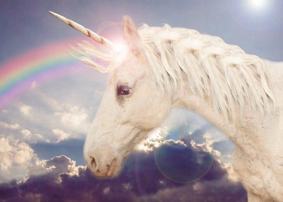 Papermoon Fototapete »Unicorn Rainbow«, glatt