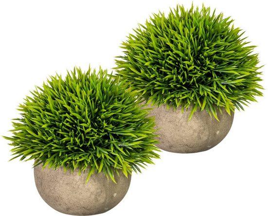 Künstliche Zimmerpflanze »Christin« Grashalbkugel, my home, Höhe 12 cm, im Paperpot, 2er Set