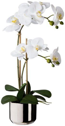 Kunstpflanze »Orchidee Phalaenopsis«, im Keramiktopf, H: 50 cm