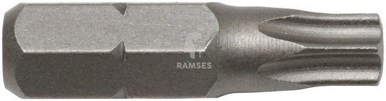 RAMSES Bit-Set , Innenvielzahn TX 40 Größe 40, 20 (Stk.)