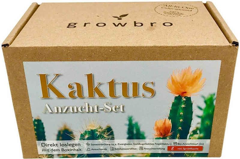 Kunstkaktus »Kaktus Anzuchtset inkl. Sprühflasche, Geburtstagsgeschenk, Geschenke für Frauen & Männer, Gastgeschenk, Zimmerpflanzen,«, growbro