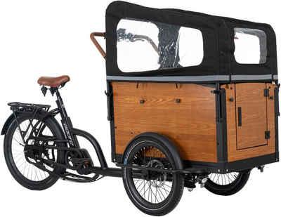 Adore E-Bike »Straight«, 7 Gang Shimano Nexus Schaltwerk, Nabenschaltung, Mittelmotor 250 W