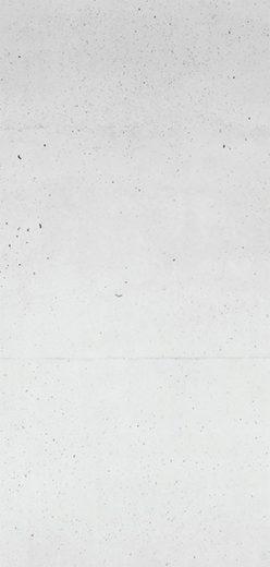 Sanotechnik Duschrückwand »Sanowall«, Höhe: 205 cm