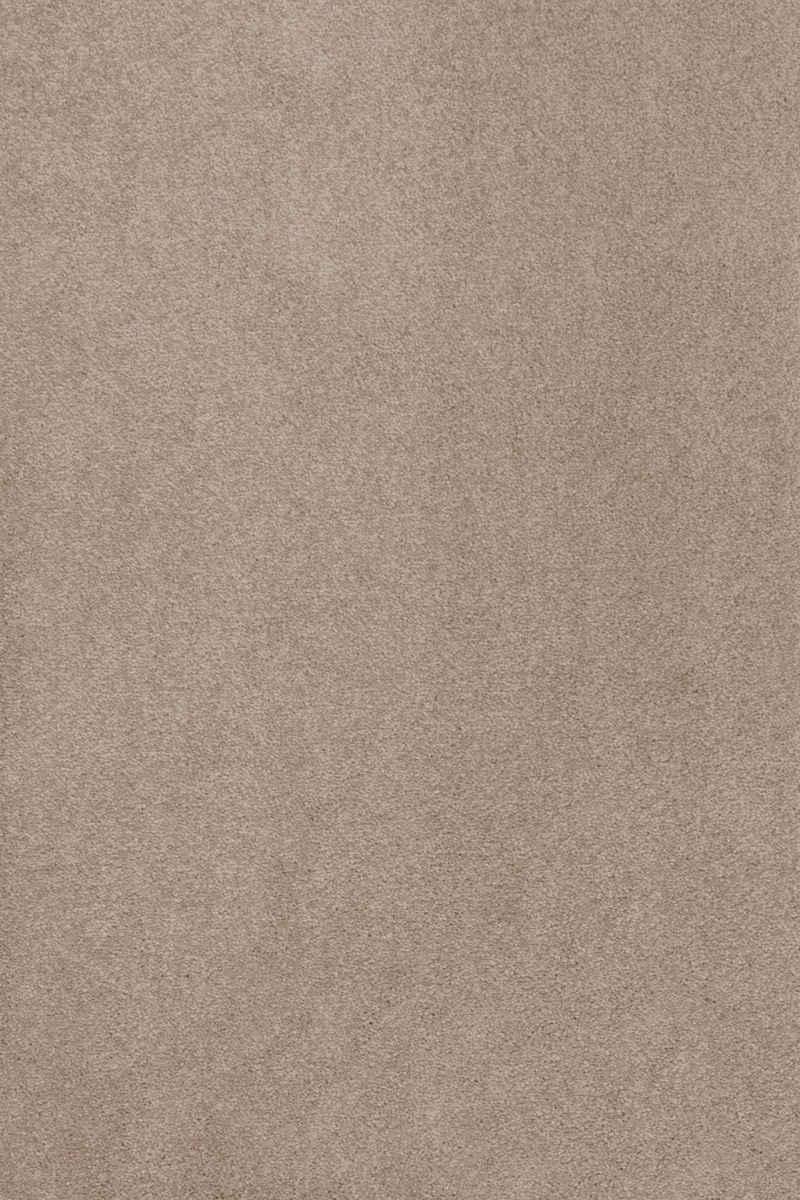 Teppich »Proteus«, Sedna, rechteckig, Höhe 12 mm