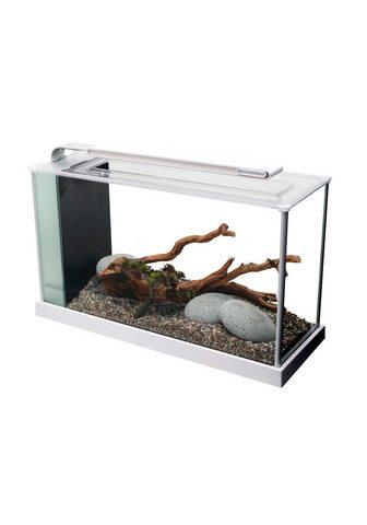 FLUVAL Akvariumas »Nano-Aquarium Spec 5« BxTx...