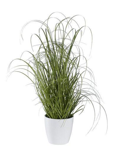 Deko-Pflanze Grasbusch Grasbusch