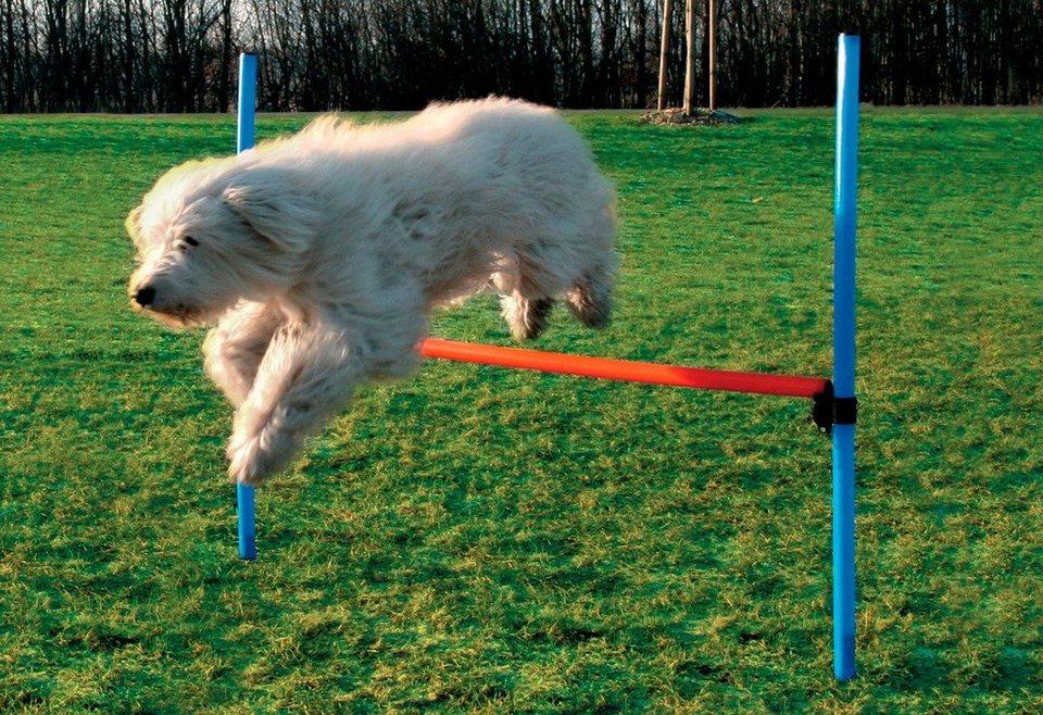 blau Ø 25 mm Stange Agility Hundesport Länge 80 cm