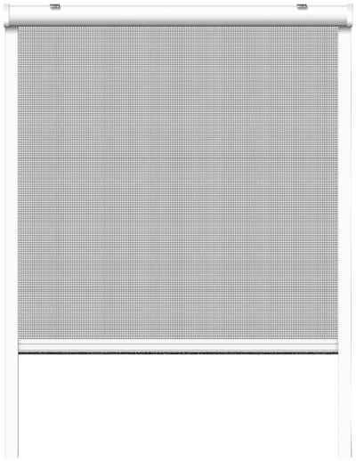 SCHELLENBERG Insektenschutz-Rollo, BxH: 160x160 cm, Rahmen weiß