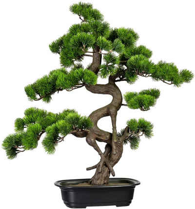 Kunstbonsai »Bonsai Kiefer« Bonsai Kiefer, Creativ green, Höhe 65 cm, in Schale