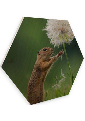 Wall-Art Holzbild »Eichhörnchen Holzbild Blumen...