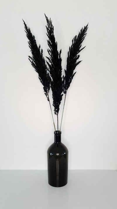 Trockenblume »Dried Pampas« Pampasgras, Everflowers, Höhe 110 cm, 3er Set