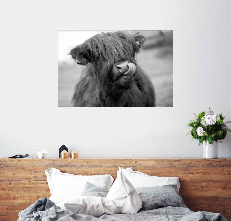 Posterlounge Wandbild, Highland Cattle Schwarz-Weiß