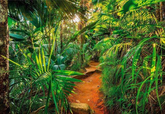 KOMAR Fototapete »Papiertapete Jungle Trail«