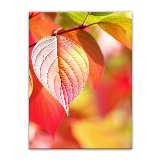 Bilderdepot24 Leinwandbild, Leinwandbild - Herbstblätter