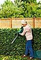 BOSCH Akku-Heckenschere »Easy HedgeCut 12-35«, (1 x 12 Volt / 2,5 Ah LI-Akku, Ladegerät, Bedienungsanleitung), 33 cm Schnittlänge, mit Akku und Ladegerät, Bild 2
