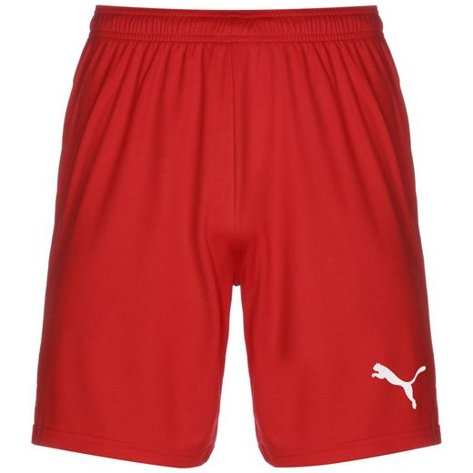 PUMA Trainingsshorts »Teamgoal 23 Knit«