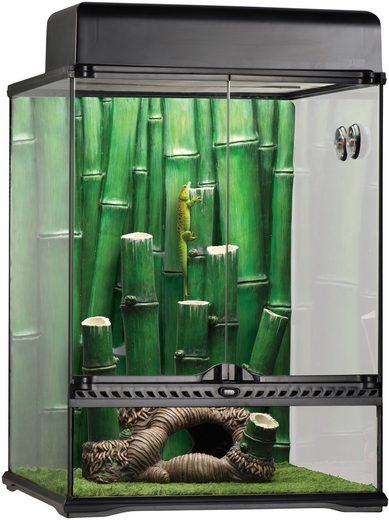 Exo Terra Terrarium »Bamboo Forest Kit«, BxTxH: 48x47,5x63 cm