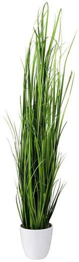 Kunstpflanze »Grasbusch«, im dekorativen Topf, H: 90 cm