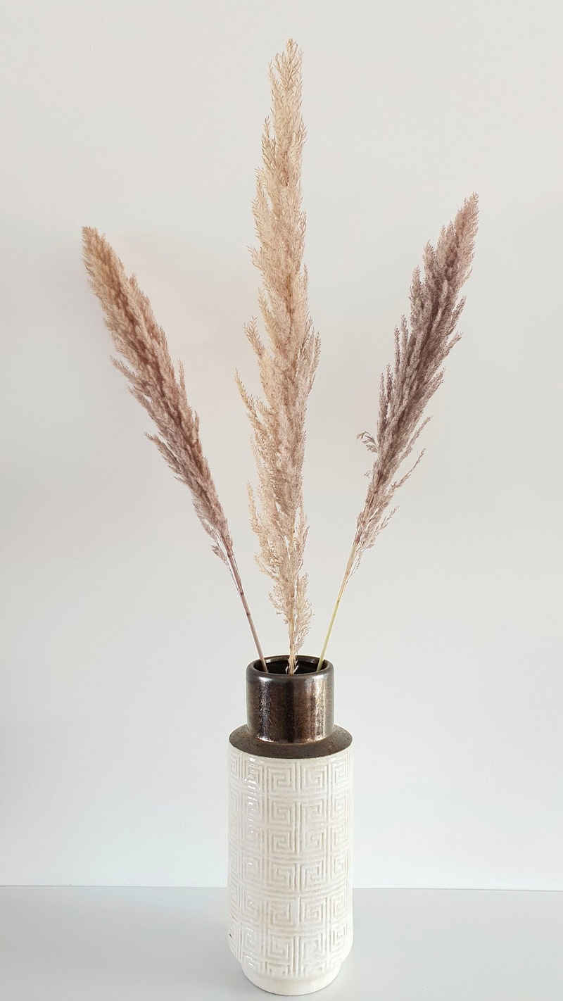 Trockenblume »Yonne«, Leonique, Höhe 110 cm, Pampasgras im 3er-Set