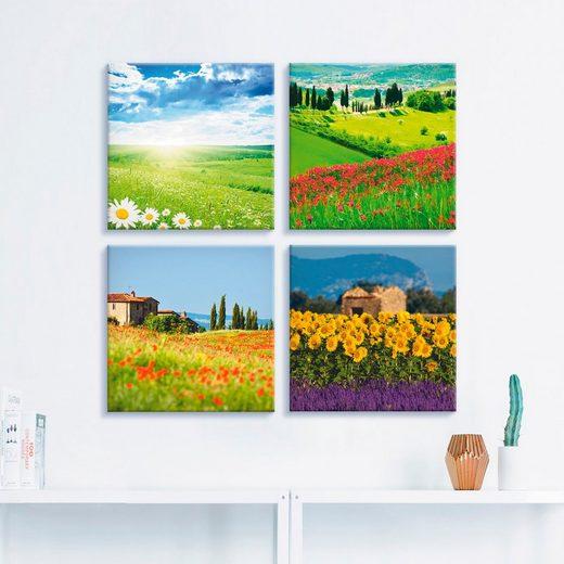 Artland Leinwandbild »Gänseblume Zypressen Mohn Lavendel«, Felder (4 Stück)