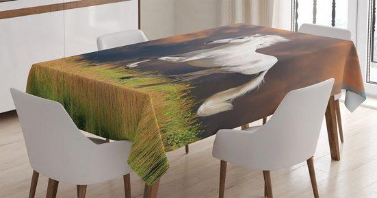Abakuhaus Tischdecke »Personalisiert Farbfest Waschbar Für den Außen Bereich geeignet Klare Farben«, Tier Andalusier Dusk