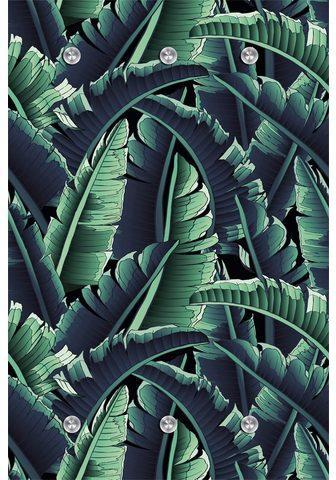 queence Kabykla »Dschungel«