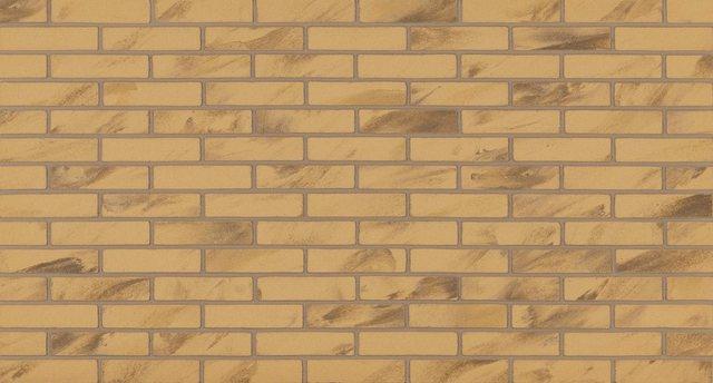 ELASTOLITH Verblendsteine »Barcelona«| beige/natur| für den Innenbereich| 1 m² | Baumarkt > Wand und Decke > Verblendsteine | ELASTOLITH