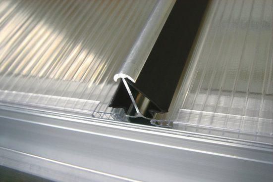 Vitavia Windsicherung »Gr. L«, für Gewächshäuser mit 4 mm Hohlkammerplatten