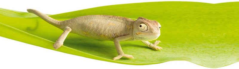 Fenstersticker »Chameleon«, Kleine Wolke, halbtransparent, glatt, für Bad und Dusche