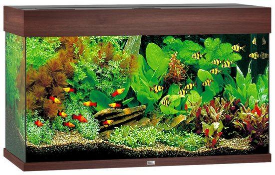 JUWEL AQUARIEN Aquarium »Rio 125 LED«, BxTxH: 81x36x50 cm, 125 l