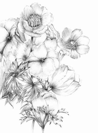 Komar Fototapete »Embroidery«, glatt, bedruckt, floral, botanisch