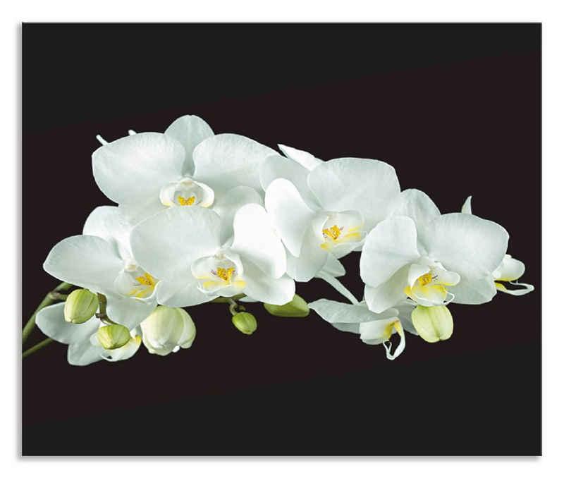 Artland Küchenrückwand »Weiße Orchidee auf schwarzem Hintergrund«, (1-tlg), selbstklebend in vielen Größen - Spritzschutz Küche hinter Herd u. Spüle als Wandschutz vor Fett, Wasser u. Schmutz - Rückwand, Wandverkleidung aus Alu