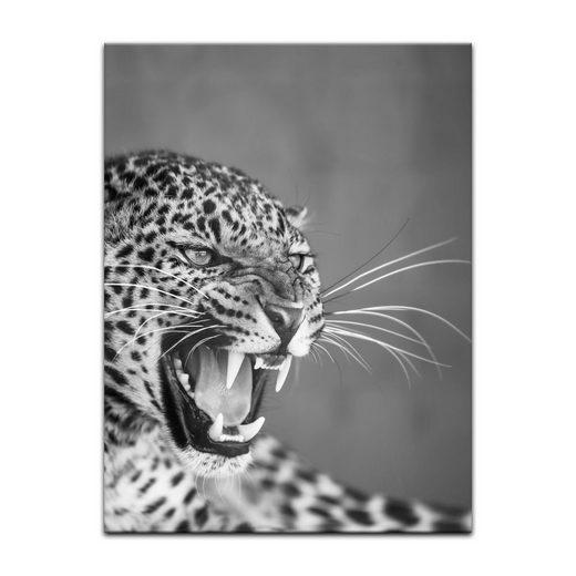 Bilderdepot24 Leinwandbild, Leinwandbild - Leopard - schwarz weiß
