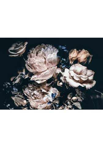 Consalnet Vliestapete »Cremefarbige Blumen« flor...