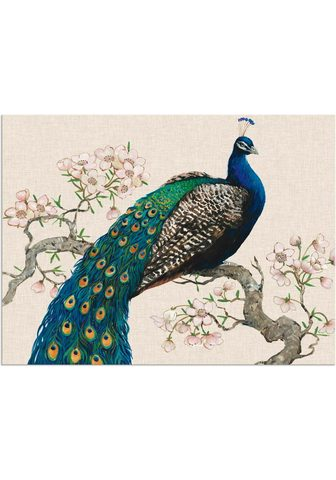 Artland Paveikslas »Pfau & Blüten I« Vögel (1 ...