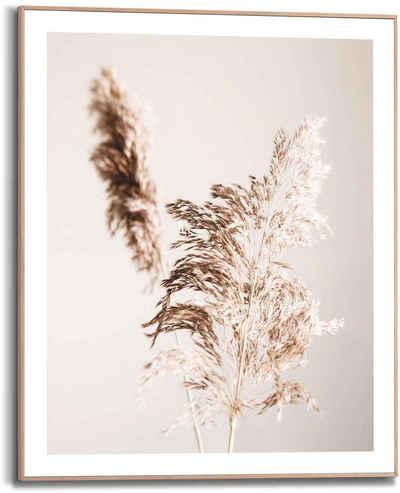 Reinders! Bild »Pampas Natur - Ruhe - Trokenblume«, (1 Stück)