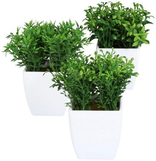 Kunstpflanze »Grasbüsche«, 3 Stk., im Kunststofftopf, H: 13 cm