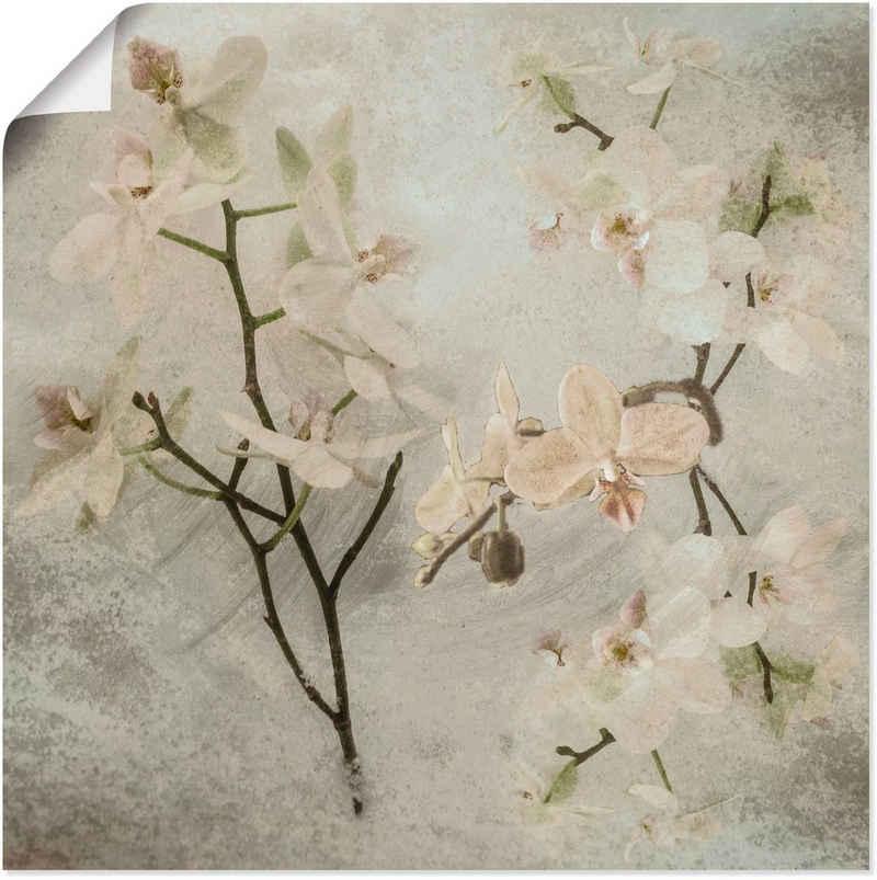 Artland Wandbild »Orchideen«, Blumen (1 Stück), in vielen Größen & Produktarten -Leinwandbild, Poster, Wandaufkleber / Wandtattoo auch für Badezimmer geeignet