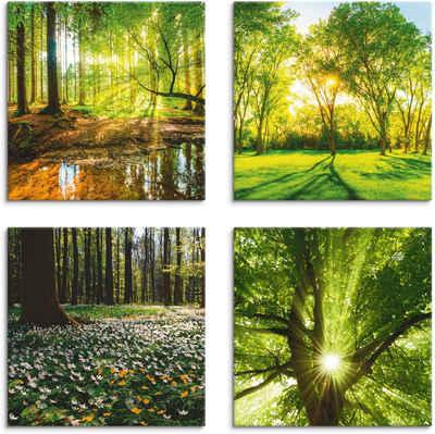 Artland Leinwandbild »Wald Bach Frühling Windrosen Sonne Baum«, Wald (4 Stück)
