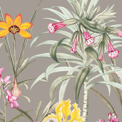 anna wand Bordüre »Botanical Garden mehrfarbig/taupe«, selbstklebend
