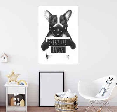 Posterlounge Wandbild, Rebel dog
