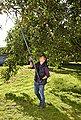 GARDENA Baum- und Strauchschneider »StarCut 410 plus, 12001-20«, bis 6,5 m Arbeitshöhe, Bild 8