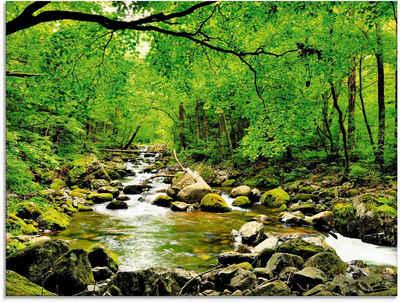 Artland Glasbild »Herbstwald Fluss Smolny«, Wald (1 Stück)