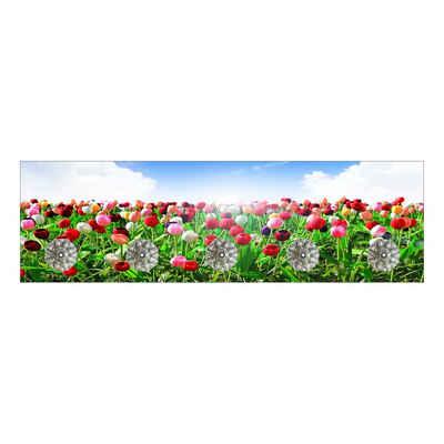 HTI-Line Garderobenleiste »Garderobe Tulpen«