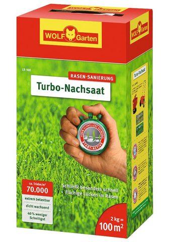WOLF-Garten Rasensamen »Turbo« 2 kg in versch. Geb...