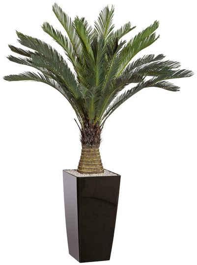 Kunstpalme »Cycaspalme« Palme, Creativ green, Höhe 130 cm, im Kunststofftopf
